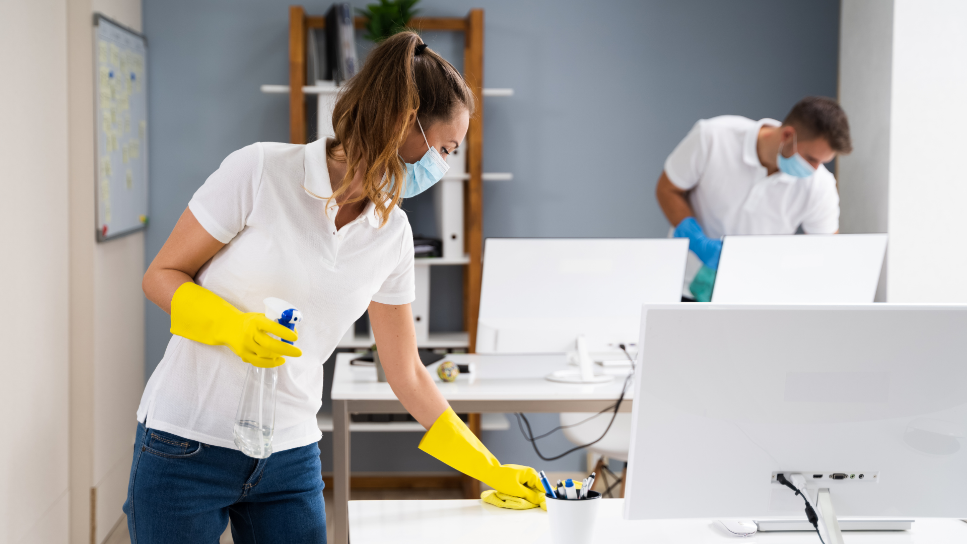 office cleaning services auckland kleenco